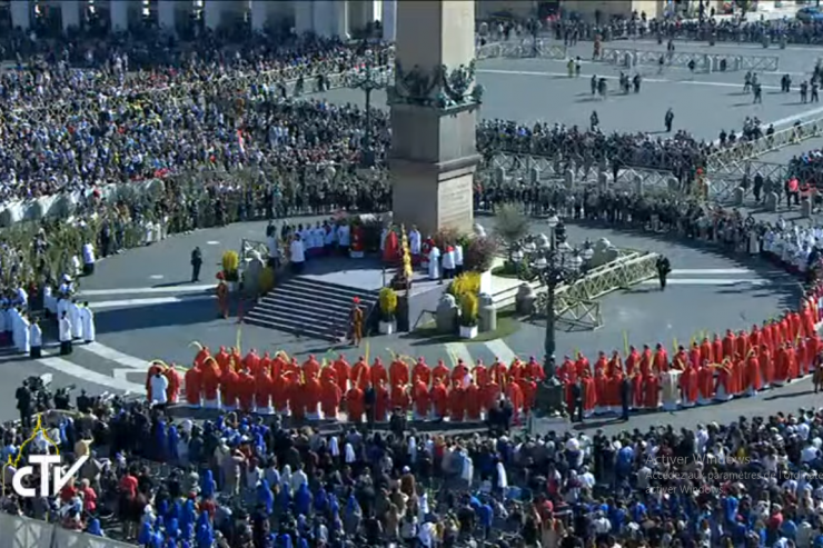 """Pope Francis' Homily for Palm Sunday: """"We have no other Lord but him"""